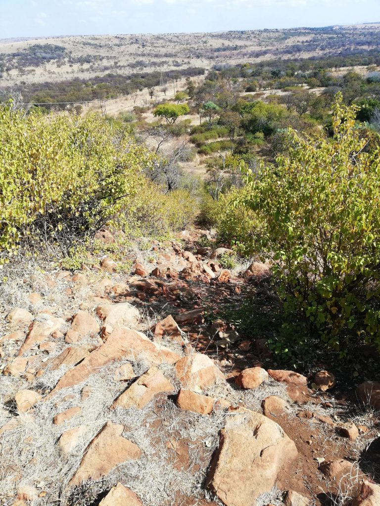 Final ascent on Archeology Trail