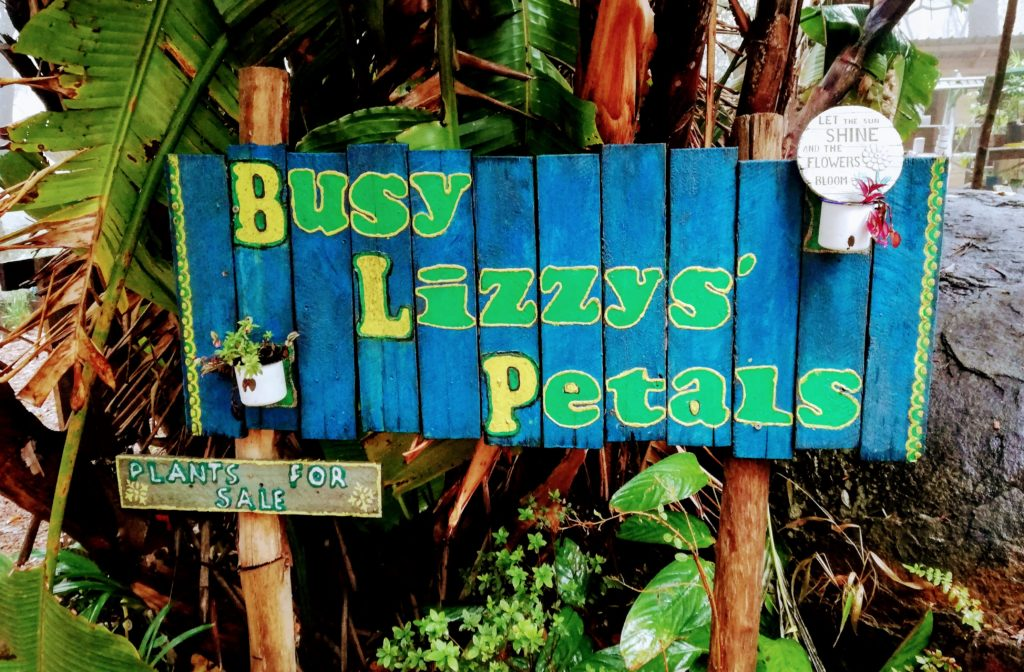Busy Lizzys Petals at Magoebaskloof Farmstall