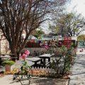 Cullinan Main Street