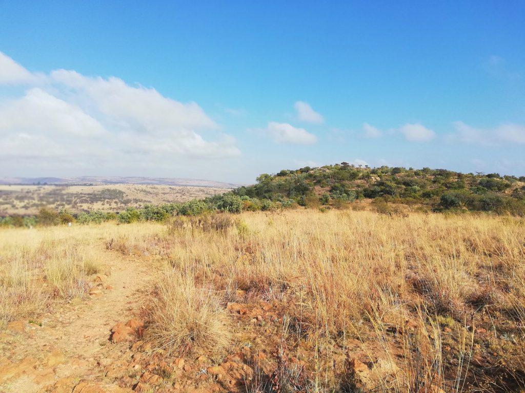 First peak Windy Brow Geology Trail