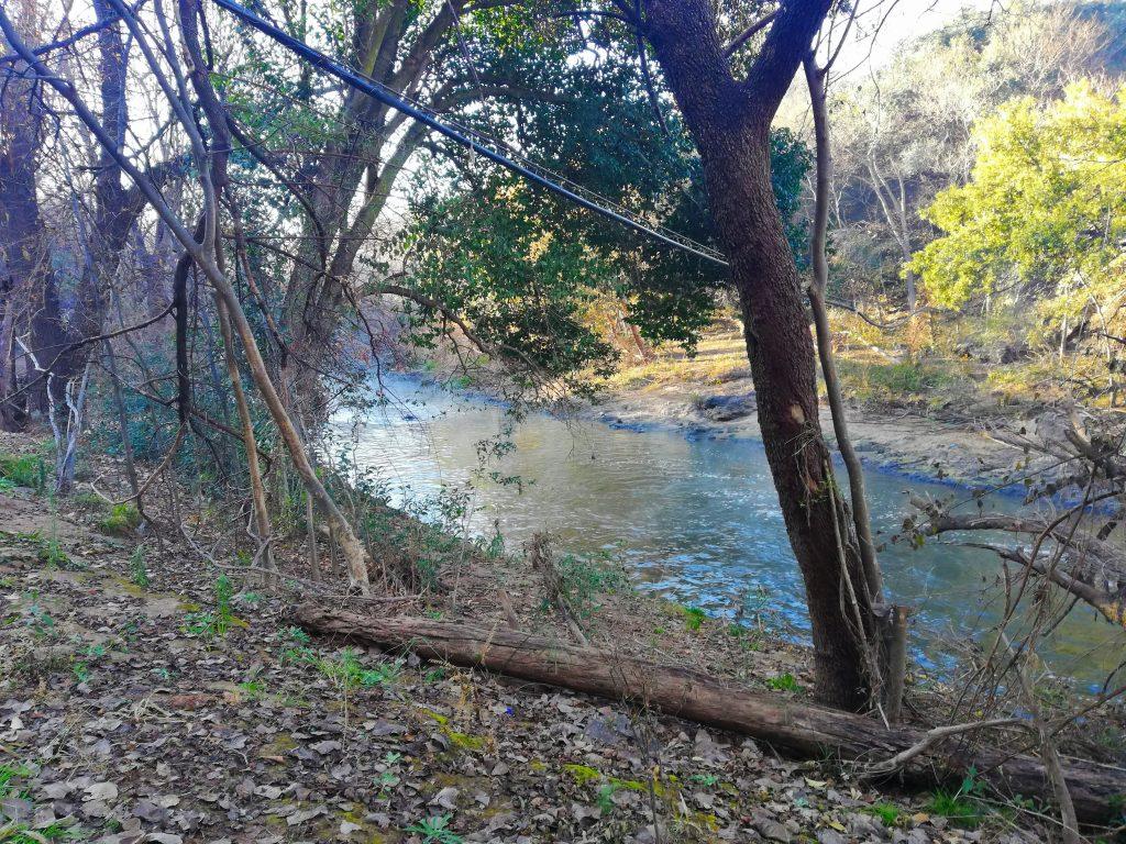 Krokodilberg Trail beginning