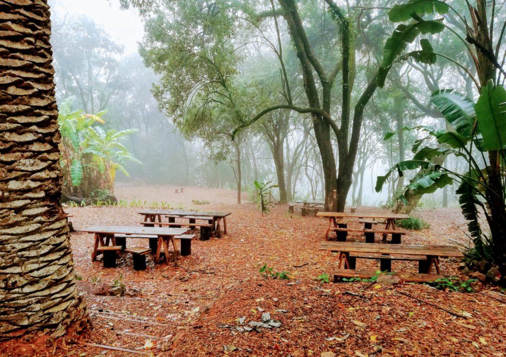 Picnic tables outside Magoebaskloof Farmstall